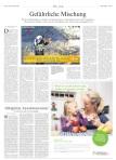 Die Welt 19.11.2010 Artikel